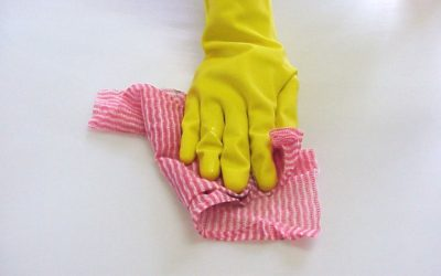 Top 10 Cleaning Tips to Stay Protected